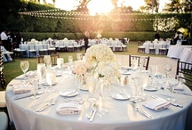 Outdoor | Receptions / Cypress Courtyard, Royal Palm Courtyard, Banyan Courtyard. The choice is yours. / by Hyatt Regency Coconut Point Resort & Spa Resort & Spa