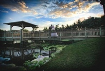 Photo Op | Locations / by Hyatt Regency Coconut Point Resort & Spa Resort & Spa