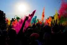 b o l d b r i g h t s / a splash of colour