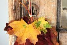 Seasons / changing seasons, nature's beauty