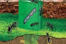 TERRO Ant Control / When it comes to ant control, we've got you covered. From liquid and granular ant baits to aerosol ant killer products, you'll find what you need at our online ant elimination store! www.terro.com