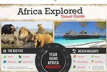 African Wildlife / Explore the wild side of Africa.
