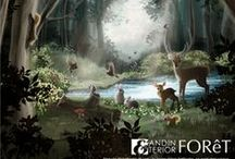 FOReT / ANDINTERIOR