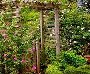 ❀ Cottage Garden Inspiration ❀ / English cottage garden, French cottage garden, potager, rustic garden, informal garden, vegetables, fruits, herbs, flowers, garden ideas, garden décor