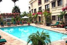 Sunset Plaza Hotel / Check out our comfy rooms and gorgeous pool at our hotel in West Hollywood!