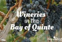 Wineries / Are you a wine lover? If so, you'll love this board as it will show you all the wineries located in the Bay of Quinte.