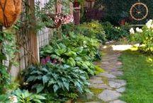 ❀ Shade Garden & Side Yard ❀ / plants for shade/partial shade, foliage, shrubs, garden paths, side yard design ideas