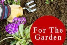 growing a garden/plants