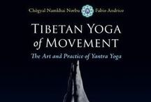 Tibetaanse yoga/Energetisch werk