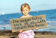 earth: ocean & sea life