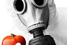 food, chemicals, fast food / Food info