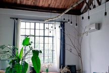 Interior / by amy