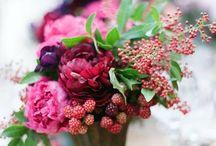 Flower arrangement / Composizioni floreali