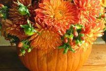 DYNIA W ROLI GŁÓWNEJ / dynia, ozdoby z dyni, Hallowen, warzywa