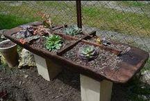 Macetas y maceteros cactus y suculentas / Selección de macetas para cactus y suculentas. Muchas de ellas en https://casaruralmelones.wordpress.com/