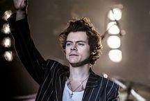 H A R R Y  S T Y L E S / Welcome this little, but grown up cupcake. Ladies and gentleman, Harry Styles!