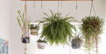 Ideias Criativas / Creative Ideas / Ideias charmosas e criativas para a sua casa.