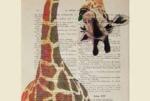 giraffe I°