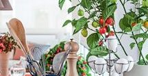 Espaços Gourmet / Gourmet Spaces