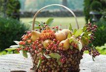 {INSPIRATION} Autumn