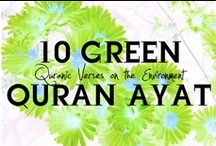 Eco-Islam / Articles, projects, Quran quotes and more from the environmental principles of the Islamic faith.