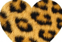 ANIMAL PRINT ❤❤ / by ♥♥ ♥♥ Melissa ~ Ann ♥♥ ♥♥