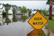 Flood Insurance / information about flood insurance
