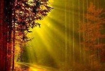 Light Inspiration / Boras for lighting effects for design inspiration.
