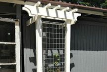 Front garden / Window treatments, plants, garden design