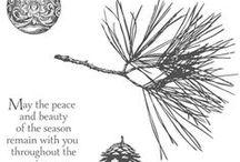 Cards - Ornamental Pine