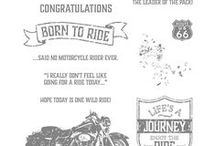 Cards - One Wild Ride
