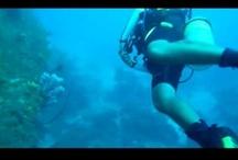 Travel video / Quelques vidéos d'Instinct Voyageur TV