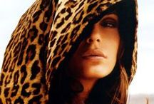 """Leopard Print / """"My weakness is wearing too much animal print""""   Jackie Collins / by Marg Campbell"""