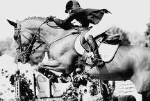 Horse riding / Xxx