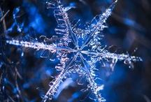 Snowflakes and frosts