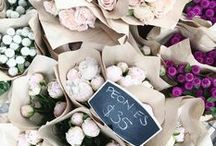 A Day At The Flower Market / Fresh beautiful flowers.