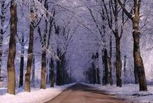 Winter and Snow / by Bonnie Jones