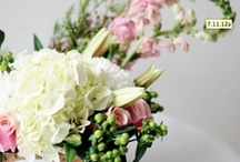 Florals / by Ashleigh Axios
