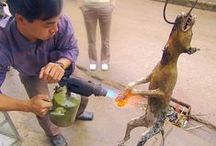 BOYCOTT ASIA TO END THIS / Asian governments will not stop these Abominations until they are hit with financial loss. If we boycott Asian products for 3-6 months this torture will end. Please do not buy products made in any Asian country. Boycott Vacationing in Asia. They spend Your Dollars buying dogs & cats to torture, buying dog meat/cat soup, even the torture tools. Stop supporting these satanic crimes. I find treasures at 2nd hand shops. Goggle for items made in countries that are humane. Please help spread the word.