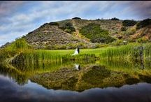 Our Pond / The breathtaking outdoor setting centered around the Gazebo on a lush green lawn, along with our magnificent Ballroom is the perfect venue to celebrate your love. http://www.moorparkgolf.com/
