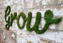 Comm Garden Store CI Inspiration