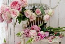 Flowers / Flowers in home decor