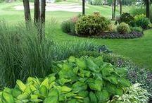 Lovely Gardens  /  Adoráveis Jardins / Plants, flowers, fruits and accessories. Plantas, flores, frutas e acessórios.