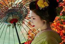 舞妓と芸妓 Maiko and Geiko / 「芸妓」は京都以外の地域にもいますが「舞妓」は京都特有です。もっとも「芸妓」という言葉自体は京都独特の表現で、ほかの地域では一般に「芸者」と呼びます。これは「芸妓」という言葉に芸と教養の双方を備えた洗練された女性という意味合いを持たせているのだと思います。また一方で「妓」には「力を持って人に尽くす」という意味があるともいわれます。お客さんに元気を与え、何度も足を運んでくれるように、芸と人格の双方を日夜磨いているのです。また舞妓はその芸妓になるための最初のステップであり、特に舞を主な芸として接客にあたることから、そう呼ばれています。