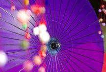 紫色 Purple of Nippon