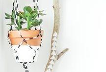 Weavings for Plants