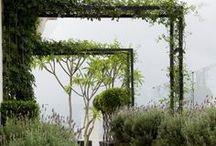STYLING • PERGOLA / Een pergola in de tuin is op diverse manieren inzetbaar: voor een schaduwrijke zitplek, of juist bedoeld bedoeld om onderdoor te kunnen lopen.  Denk bij de keuze en structuur van het materiaal goed na welke sfeer u in de tuin wenst.