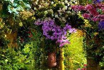 Romantic Gardens I love