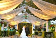 Wedding Decoration/Ambiance