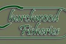 ESSEX, UK. / Carp Fishing Lakes and Venues Situated in Essex, United Kingdom.